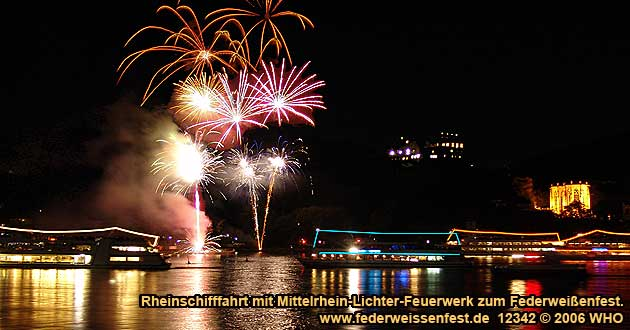 Boat cruise Rhine River Lights with Golden wine autumn and Swimming Federweisser vintage festival on board